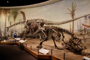 Palaeontology museum in the Canadian Dinosaur Provincial Park
