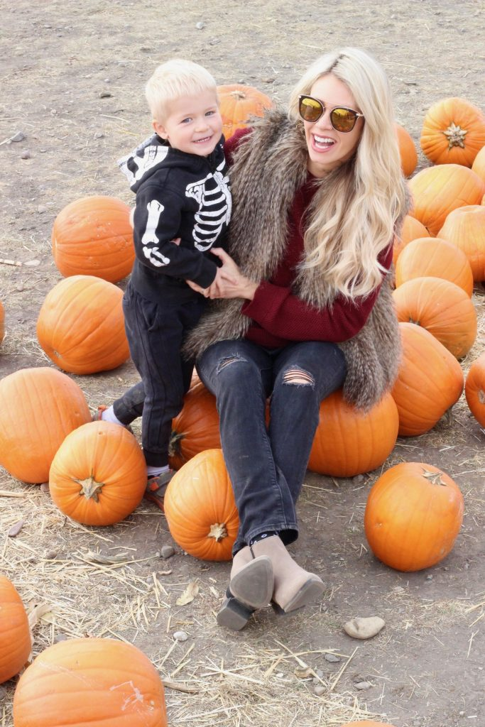 Calgary Pumpkin Patch - Corn Maze - Halloween fun for families